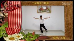 三星舞哥广场舞  天长地久 编舞:王梅