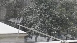 雪中乐打着雨傘准雪人