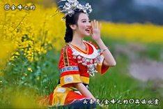 民乐欣赏06:葫芦丝演奏10首歌曲,好听极了!
