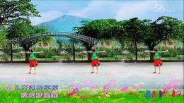 水上漂广场舞 梦见你的那一夜 编舞:応子 制作:杨柳青青, 高高