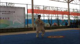 汝州市第六届运动会暨全民健身大会 张松林陈式拳