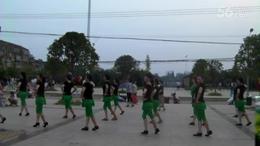 黄陂理林健身排舞队广场舞  草原的月亮