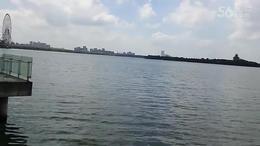 MAH00203苏州金鸡湖