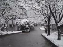 永川区红炉镇