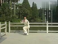 王二平陈式养生太极扇二十四式演示
