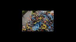 你见过这么多的共享单车吗