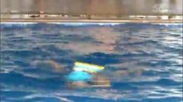 2016城市天地广场少儿游泳培训