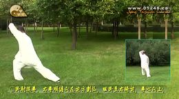 混元太极拳24二十四式20 击地捶动作教学沈克良制片