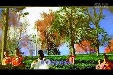 【KTV】无量山樱花谷等你来(3分48秒)