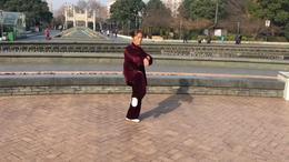 武当三十八式太极拳  演练陈庆琳