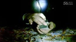 魔术(手法消失的牌)