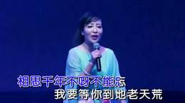 长安情歌_张静原版纯伴奏:警魂