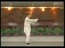 赵幼斌杨氏太极拳85式05