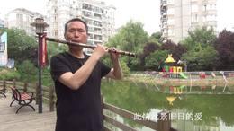 惜别的海岸 笛子独奏 琴台乐坊