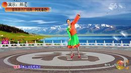 荟萃燕子广场舞《阿克香巴》编舞:王梅 制作:探月卫星