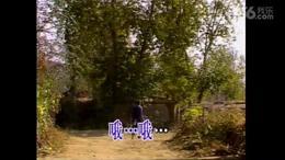 篱笆墙的影子(葫芦丝)