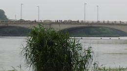 MAH00599排着队在桥上釣魚