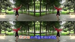 永远在一起 宜都市枝城镇广场舞刘红平 红喜数码传媒20150903