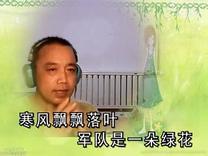 【军中绿花畅享金生翻唱