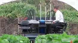 国外的专门摘草莓的机器【Youtube科技创新】_标清