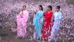 太仆寺旗旅游蒙古马文化节御马节那达慕