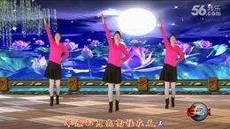 阿花广场舞草原之月
