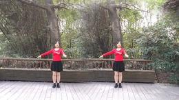 满天星广场舞《美丽的遇见》编舞:紫芊城