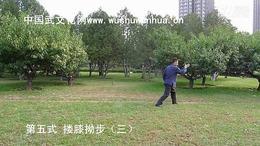 郭彦君老师演练杨氏太极拳精要十八式
