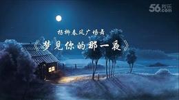 杨柳春风广场舞《梦见你的那一夜》