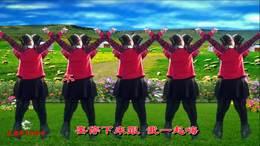 带你潇洒带你嗨 宜昌市白洋滚钟坡广场舞 习舞:孟庆梅