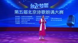 经典诗歌朗诵mp3作品第五届放飞梦想北京诗歌朗诵大赛视频安淑芳