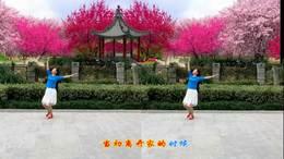 感悟人生广场舞《红枣树》