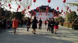 交谊舞:吉特巴《妹妹的三月花》表演:西溪舞蹈群成员.