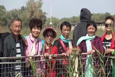 新疆是个好地方- 罗布人村