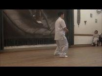 陈炳老师在国外的一段太极拳演示