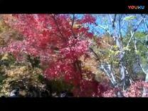 新屯公园游玩 旅游 高清完整正版视频在线观看 优酷