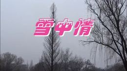 雪中情 -伯江笛子独奏- 爱凤制作- 一曲一景