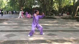 新编28式太极拳  演练陈庆琳