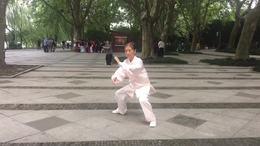 新编二十八式太极拳  演练陈庆琳