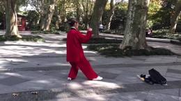 杨式传统三十八式太极拳  演练陈庆琳
