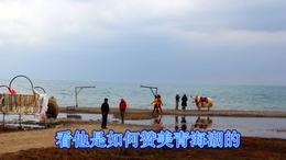 青海湖(西固柳泉)