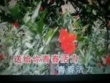 喀什噶尔美【WB】(甫人  缘月)2020.2.14.