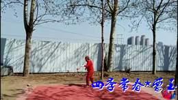 天津巨竹夫妻展示空竹缠旋高难套路 越谷过云