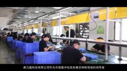 鼎力盛企业宣传片成片2018年
