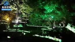 景观园林亮化工程灯具厂家