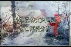 森林火灾扑救伤亡案例1_01