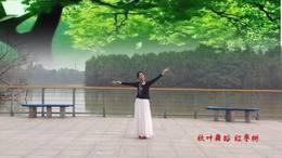 秋叶广场舞 红枣树