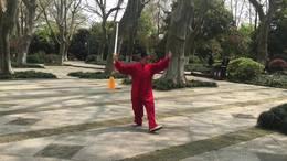 陈式四十九式太极单剑  演练陈庆琳一