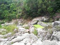 广东普宁市梅林镇永兰村的官卯石.是独一无二奇石