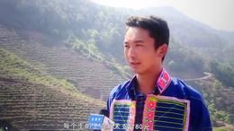 楚雄市大过口乡:盘活发展壮大村级集体经济 助推乡村振兴